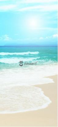 Morze 5